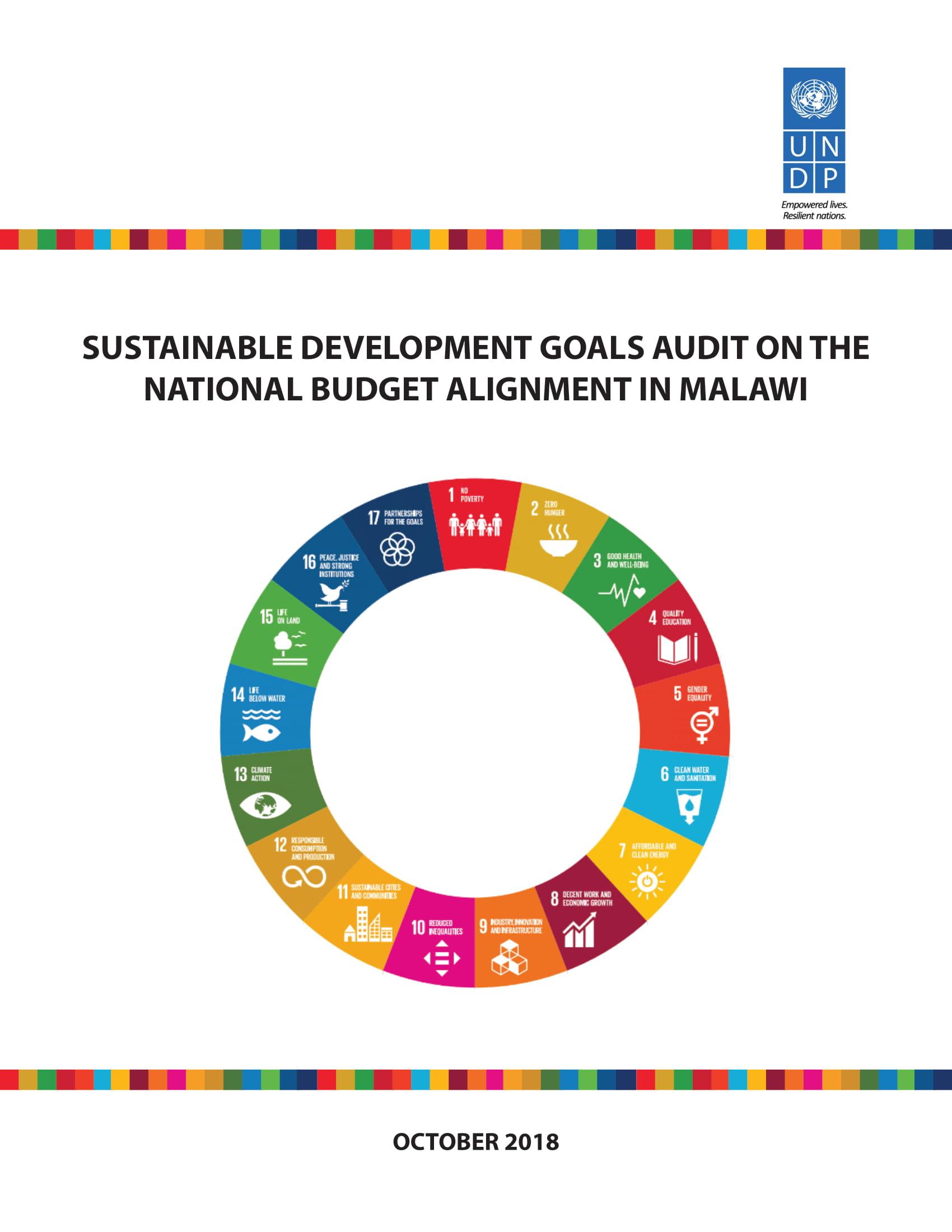 SDG Audit