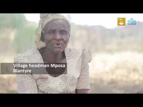 Malawian farmer ends hunger in his family with diversified crop production