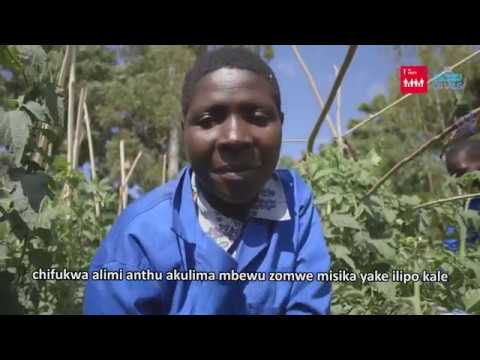 Momentum grows to tackle poverty through out-grower scheme in Malawi